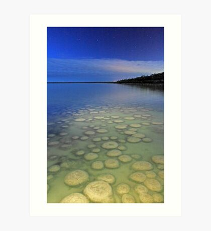Lake Clifton Thrombolites Under Moonlight  Art Print