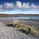 Isle of Skye II by Manuel Gonçalves