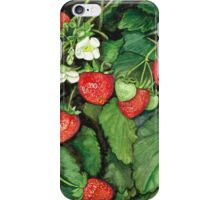 Strawberries - Fresh and Ready to Harvest iPhone Case/Skin