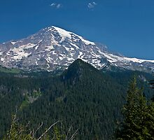 Mt. Rainier from Ricksecker Point by Barb White