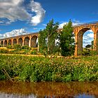 The Avon Viaduct by Tom Gomez
