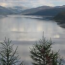 Loch Carron from the High Road by zahnartz