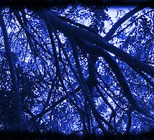 Branches and Foliage Frame the Sky – In Black and White/Electric Blue by Ivana Redwine
