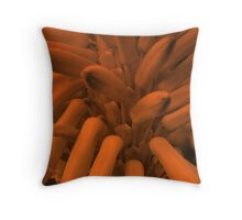 Orange Pokers-(Macro)-2 Throw Pillow