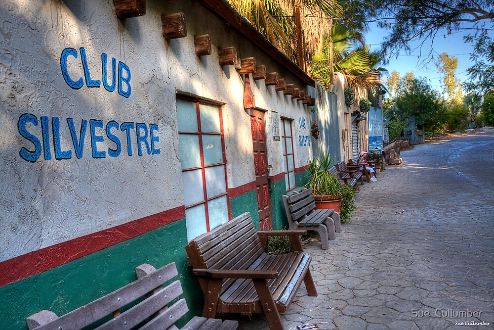 Club Silvestre by Sue  Cullumber