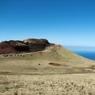 Kohala Coast by Ellen Cotton
