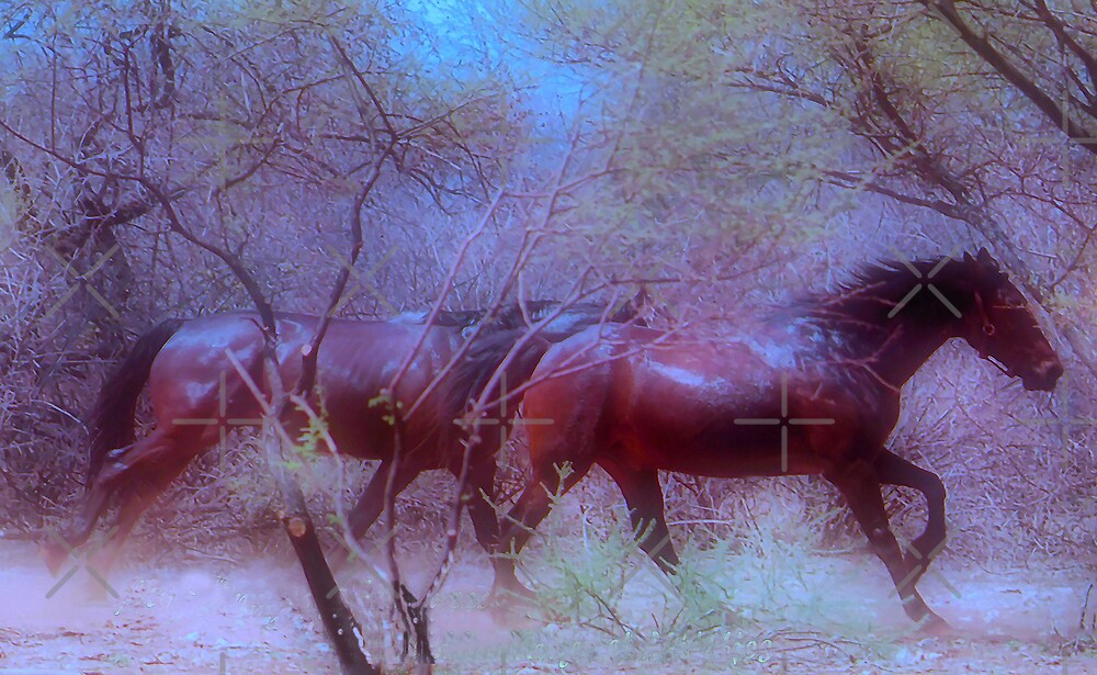 "For Dawn - Special request on ""My Horse Fantasy"" by Magriet Meintjes"