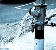 Fire Hydrant, New Orleans by taytehampton