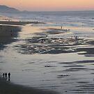 San Francisco, Ocean Beach by Igor Pozdnyakov