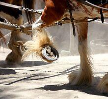 Dusty Run by DKart