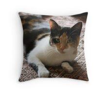 cat de Shan Throw Pillow