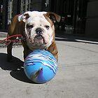 MY BALL by elatan