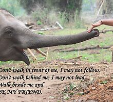 Be My Friend by Indrani Ghose
