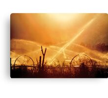 Watering Day on the Farm Canvas Print