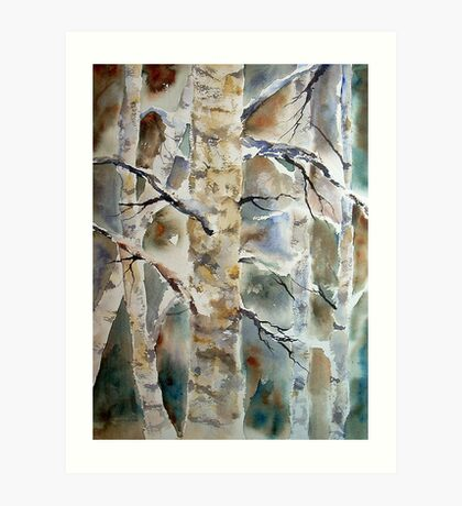 Fall Birch  Art Print