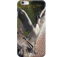 Geese Flapping iPhone Case/Skin