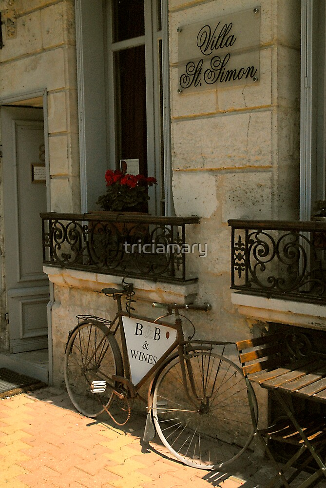 I want to ride my bicycle.... by triciamary