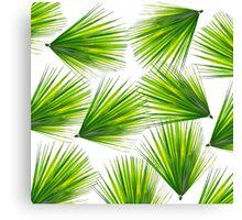 Tropical Exotic Hawaiian Palm Fronds Canvas Print