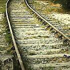 If you miss the train I'm on, you will know that I am gone...... by triciamary
