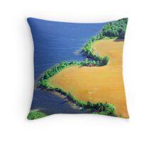 Aerial Shore Line Throw Pillow