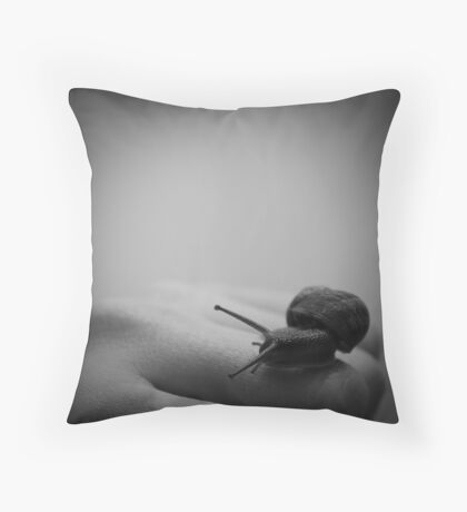 A change of direction Throw Pillow