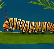 Caterpillar by Ken Boxsell
