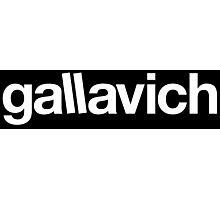 Gallavich Photographic Print