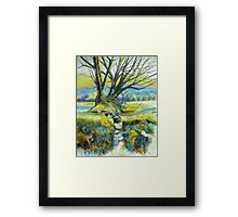 Down Tor Trees Framed Print