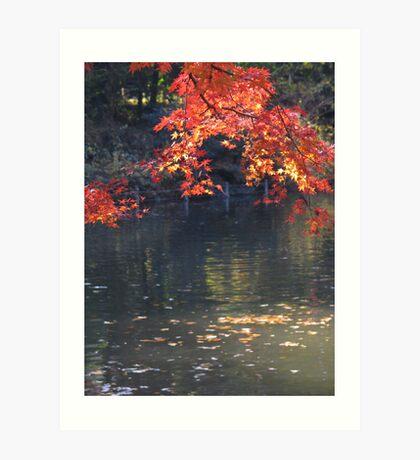 Fall images I Art Print