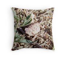 baby horn toad lizard Throw Pillow