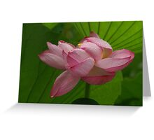 Sculpted Lotus Greeting Card