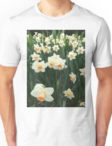 Daffodils, NYC Unisex T-Shirt
