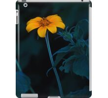 Come to the Earth iPad Case/Skin