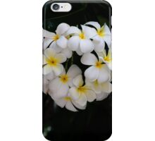 Fresh Crown iPhone Case/Skin