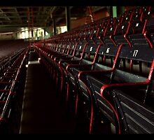 Fenway by Patrick Thomas