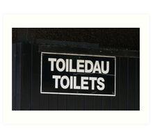 Welsh Toilet Sign Art Print