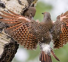 Flicker Breakfast On The Way, with Flare by A.M. Ruttle