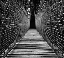Vanishing Point by Thomas Fitzgerald