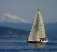 Sailing in the Puget Sound by Kay Martin