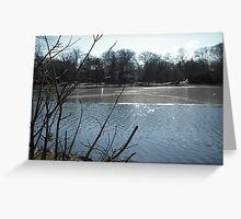 icey lake Greeting Card