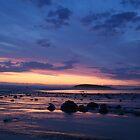 The Beach (Llangennith) by Michelle Welch