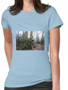Antarctic Beach Tree Springbrook Womens Fitted T-Shirt