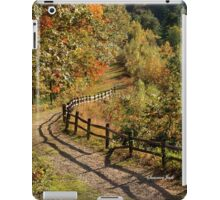Broken Fence Rail on Quabbin Trail iPad Case/Skin
