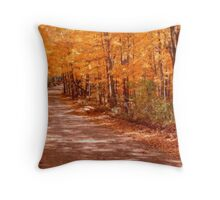 Orange Country Road Throw Pillow