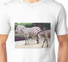 Zebras from the Berlin Zoo 2007 Unisex T-Shirt