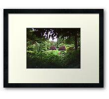 Sunken Garden No.3 Framed Print