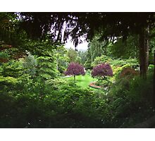 Sunken Garden No.3 Photographic Print