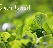 Good Luck - Greet Card by Susan Brown