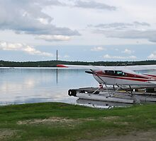 Bush Plane on Whitewater Lake by Janet Young