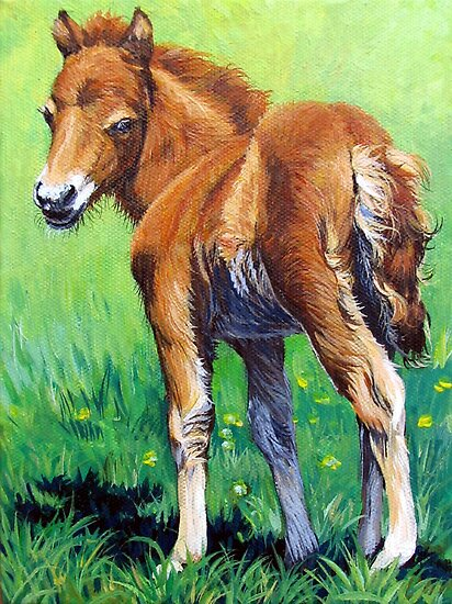 Foal. by Robert David Gellion